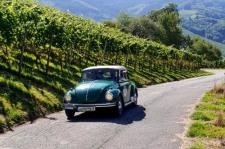 rallye entre Vignes et montagnes Alsace